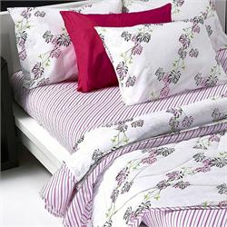 Set bedsheets double+2 Pillow cases - WATERLOO