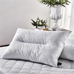 V19.69 Italia , Pillow 50 x70 COT/ FIBER SILICON SIENA